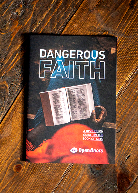 Dangerous Faith Discussion Guide